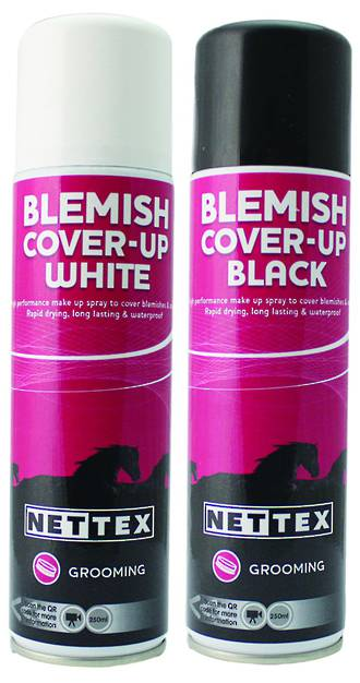 Blemish Cover Up Spray