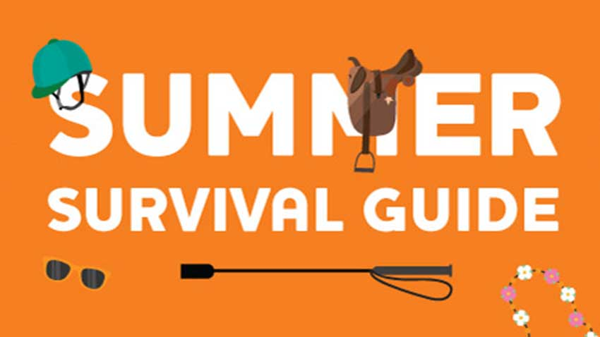 Equine Summer Survival Guide with Nettex